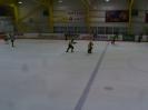 Eishockey SGO vs IFM (11.04.2015)